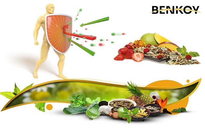 بهترین غذاها برای تقویت سیستم ایمنی بدن